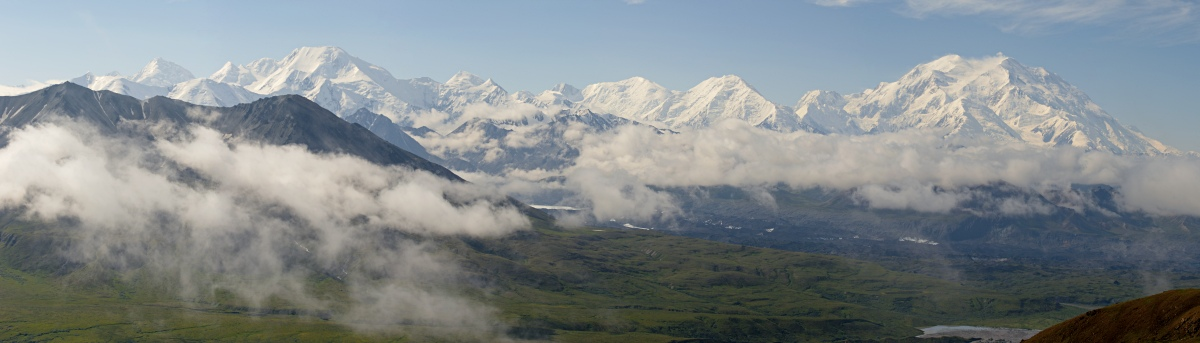 denali from eielson ridge