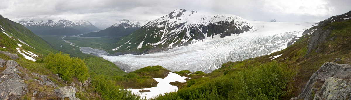 harding icefield trail kenai national park
