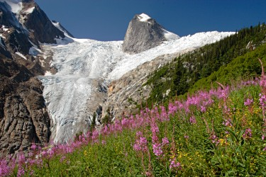 Bugaboo glacier and Hounds tooth