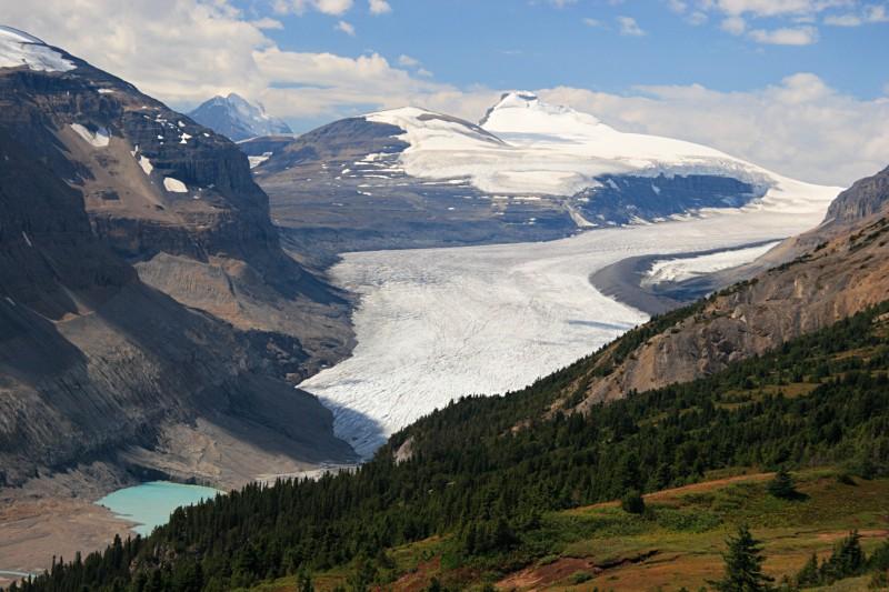 Saskatchewan Glacier, Icefields Parkway
