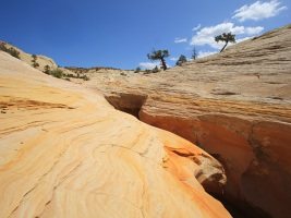 sand creek death hollow escalante
