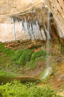 upper calf creek falls utah