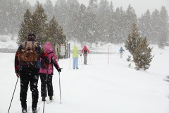 cross country skiing, 	Yellowstone National Park