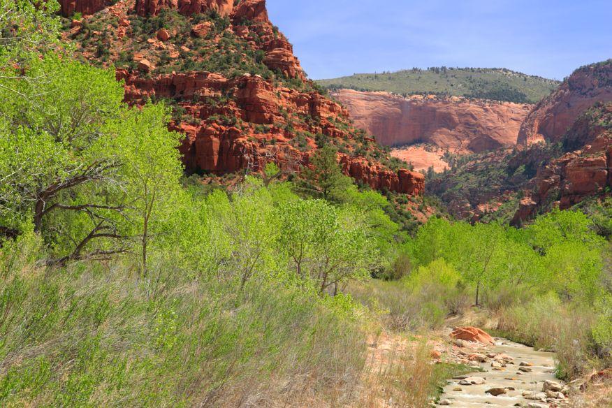Kolob Arch trail Zion