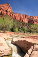 La Verkin Creek, Zion National Park
