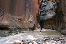 hiker in the zion narrows