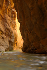 narrows of the virgin river, zion