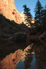 left fork of north creek in zion